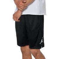 640866d7ba5 Jordan Basketball Shorts   Champs Sports